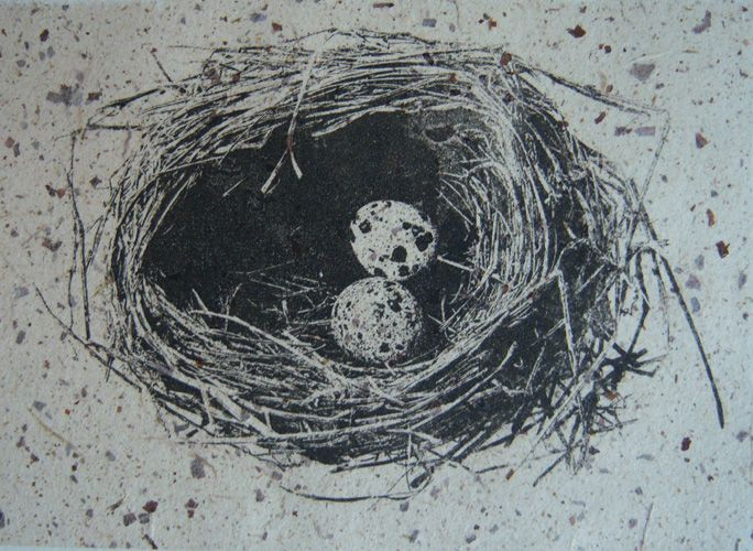 Nesting – Photo Etching by Kathy Connolly