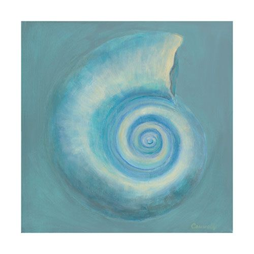 Moon Shell by Kathy Connolly