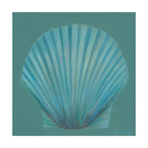 Scallop Shell by Kathy Connolly