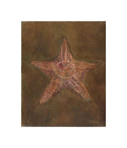 Starfish by Kathy Connolly