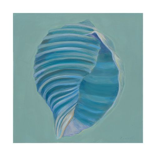 Tun Shell by Kathy Connolly