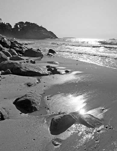 http://www.beachstreetstudios.com/artists/barby-almy/seascape/singing-beach-bw-photograph-by-barby-almy/