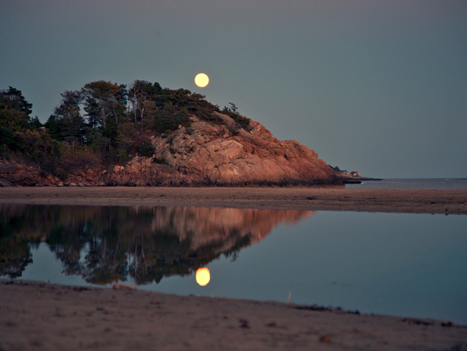 http://www.beachstreetstudios.com/artists/barby-almy/seascape/hunter-moon-singing-beach-photography-by-barby-almy/