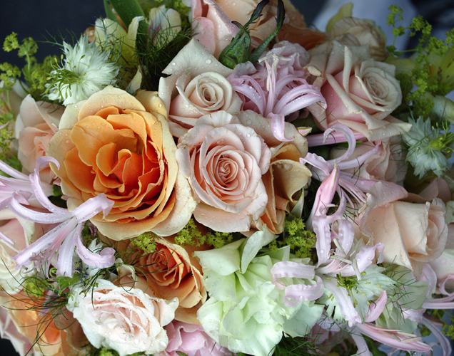 http://www.beachstreetstudios.com/artists/barby-almy/botanical/wedding-bouquet-by-barby-almy/