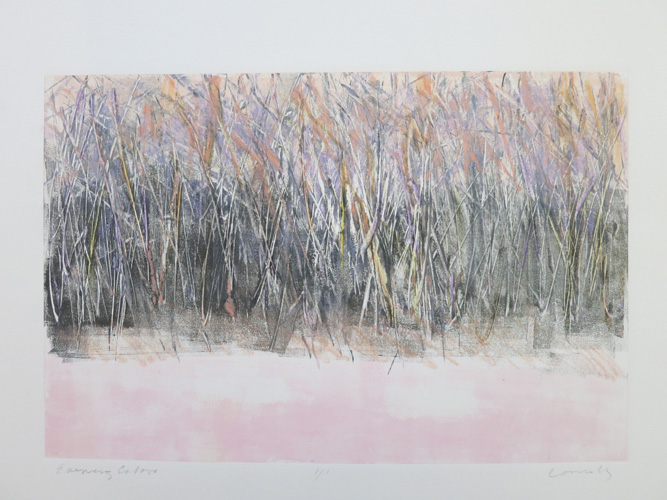 http://www.beachstreetstudios.com/artists/kathy-connolly/monotypes/evening-colors-monotype-by-kathy-connolly/
