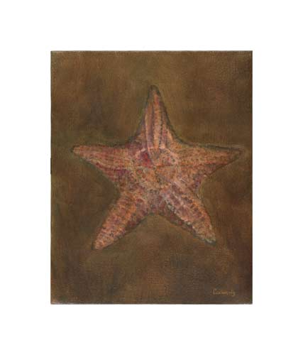 http://www.beachstreetstudios.com/artists/kathy-connolly/giclee/starfish-by-kathy-connolly/